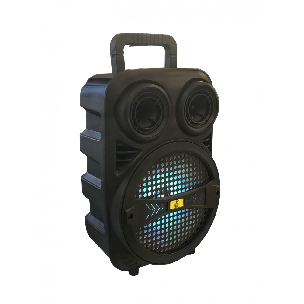BLUETOOTH SPEAKER PORTABLE 8 INCH WITH MIC ND-6006